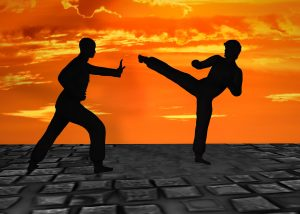 martial arts retreats